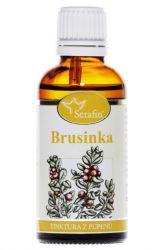 Zobrazit detail - Serafin Brusinka ─ Tinktura z pupenů rostliny 50 ml