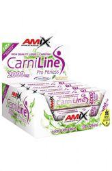 Zobrazit detail - Amix CarniLine Pro Fitness 2000 ─ 10 x 25 ml