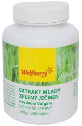 Wolfberry Extrakt Mladý zelený ječmen 250 tablet