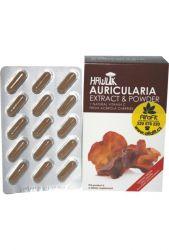 Zobrazit detail - Hawlik Auricularia Boltcovitka ─ ucho Jidášovo extrakt & prášek 60 kapslí