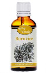 Serafin Pine ─ Tincture of buds 50 ml