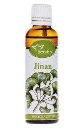Serafin Jinan (Ginkgo biloba) ─ Tinktura z bylin 50 ml