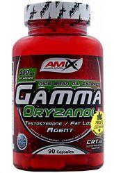 Amix Gamma Oryzanol 90 capsules