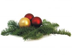 14.12.2017 - Dodání zboží do Vánoc