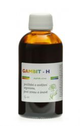 Dědek kořenář GAMBIT–H700 ml