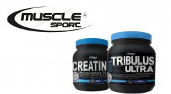 16.11.2018 - AKCE na oblíbené produkty Muscle Sport - nyní SLEVA až 27 %