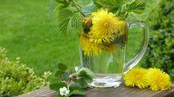 Jak detoxikovat játra a konečně je účinně pročistit