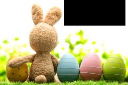 01.04.2020 - VELIKONOČNÍ OTEVÍRACÍ DOBA 2021 - Vinotéka Vínečko - 226765 - Velikonoční otevírací doba 2021 - Vinotéka Vínečko