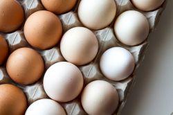 Jak snížit cholesterol přírodně? Zkuste tyto osvědčené tipy