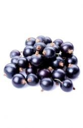 Acai Berry - plody